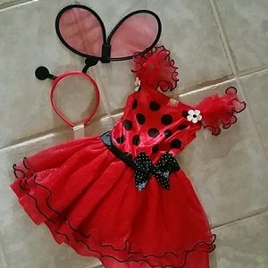Other - Glitter lady bug costume size 3-4T